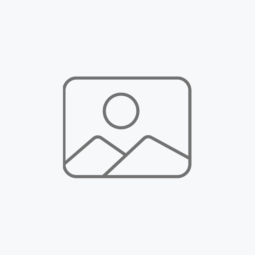 Sistema de 2 micrófonos inalámbricos con receptor VHF